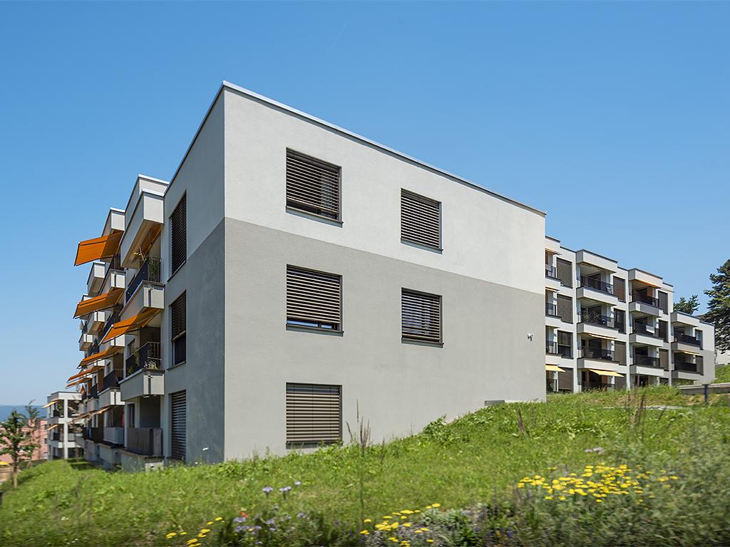 Überbauung Heidenkeller / im Heidenkeller Urdorf (normaler Deckputz)